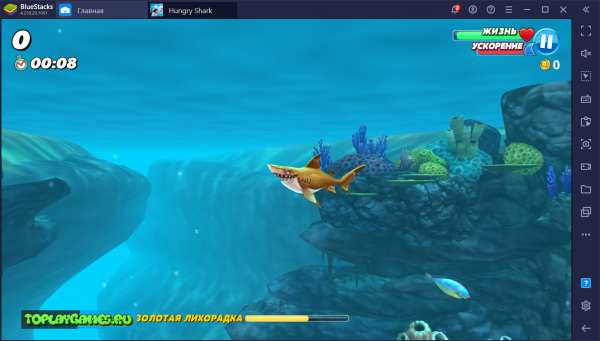 Hungry Shark World на русском языке